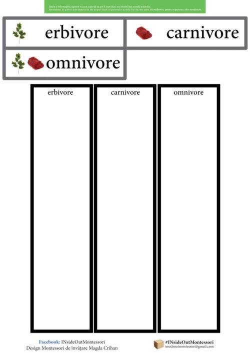 Erbivore, canivore, Omnivore
