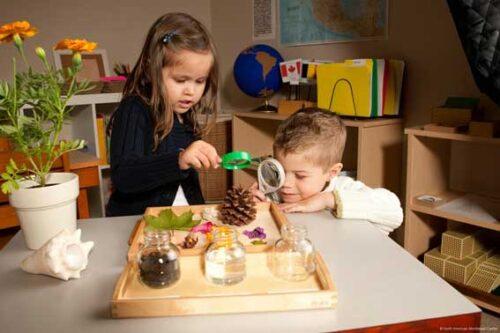 Marile Povesti Montessori