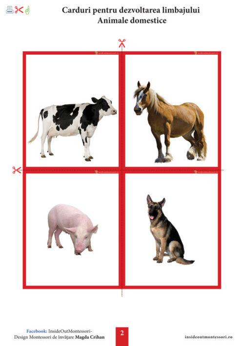 Dezvoltarea limbajului - Animale