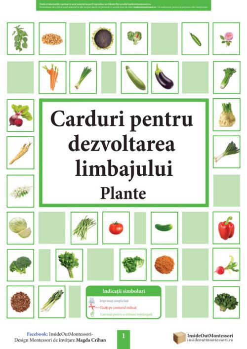 Dezvoltarea limbajului - Plante