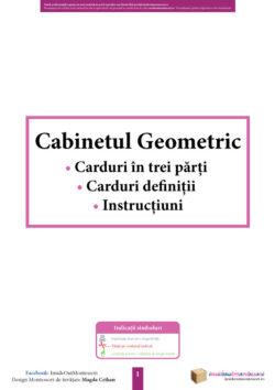 cabinetul geometric