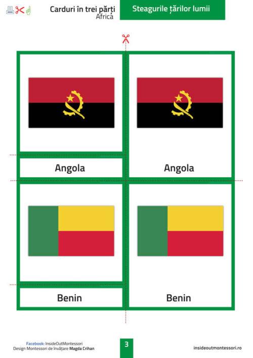Steagurile lumii - Africa