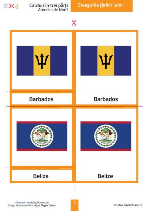 Steagurile lumii - America Nord