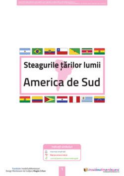 Steagurile tarilor - America de Sud