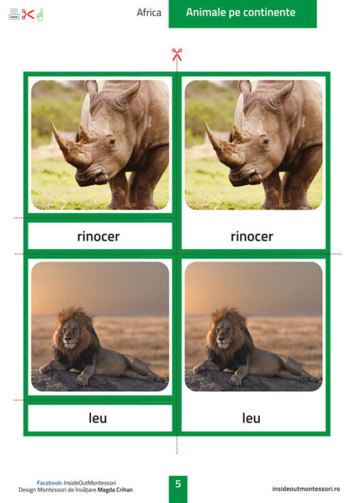 Continentele - animale